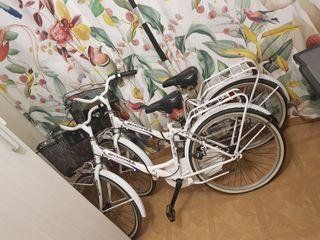 bicicletas de paseo con cesta transportin y cascos