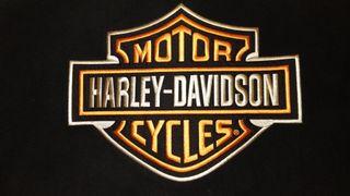 Cazadora moto polar cortavientos Harley-Davidson