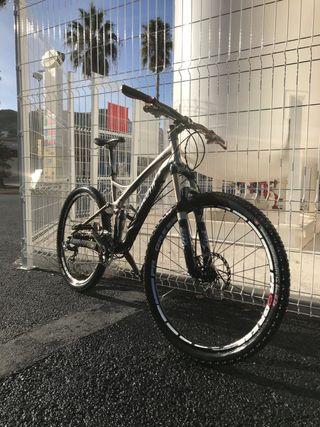 Bicicleta specialiced descenso