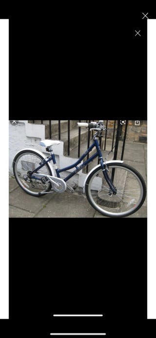 Blue Pendleton bike