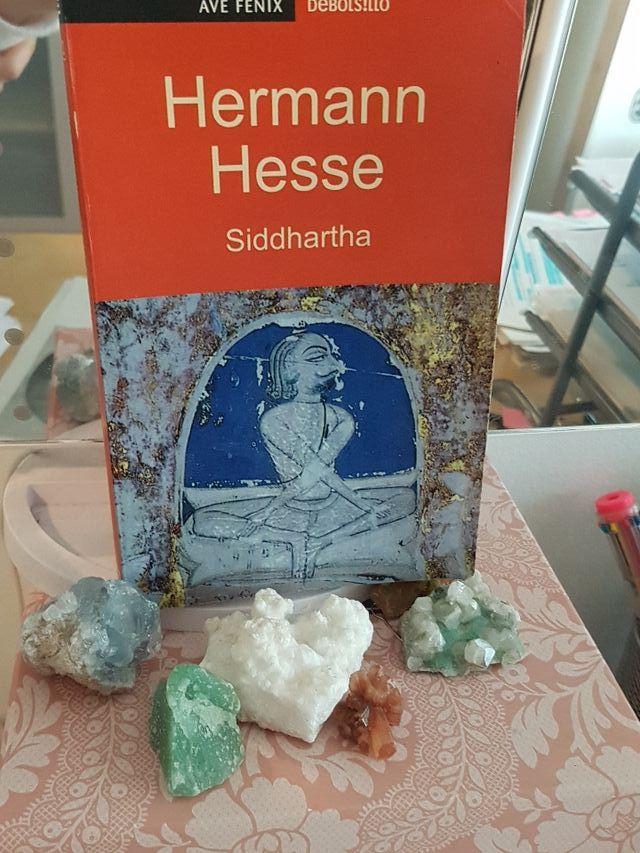 Siddhartha libro