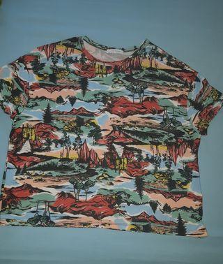 T 38 Zara camiseta chica