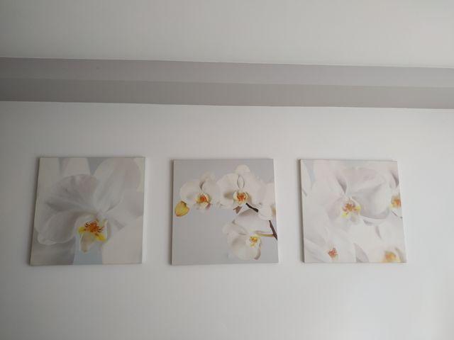 Lienzo triptico orquideas