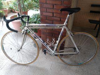 Bicicleta, BH TOP LINE
