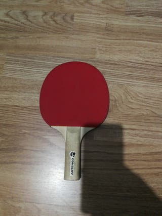 Pala ping pong