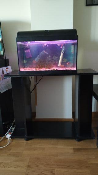 acuario 45 litros con mueble