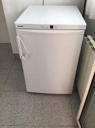 Congelador vertical Lieberher