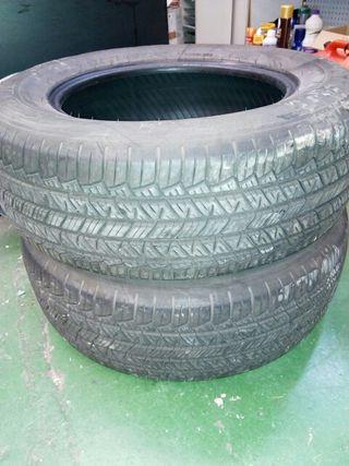 neumáticos 4x4