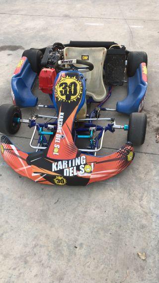 Kart energy rotax max