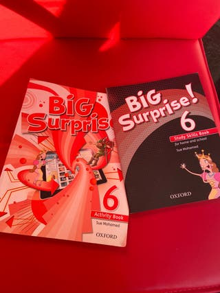 Big surprise activity book+study skills book