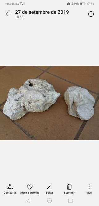piedras de jardin decorativas