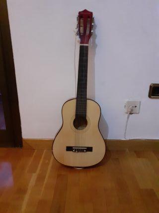 Guitarra Bursivood
