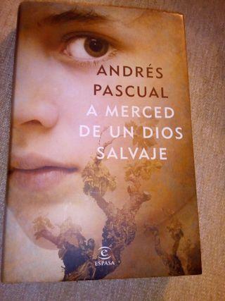 libro lectura novela