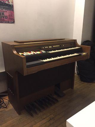 Organo Hammond
