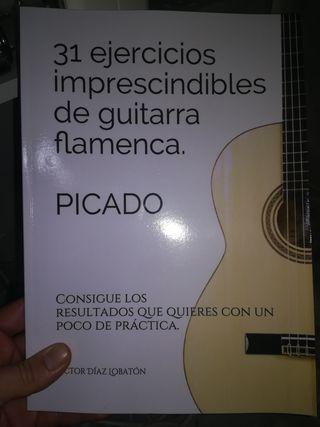 manual de guitarra flamenca.