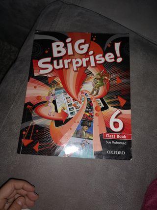 big surprise 6 primaria. class book.