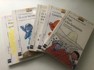 Libros lectura infantil El barco de Vapor SM