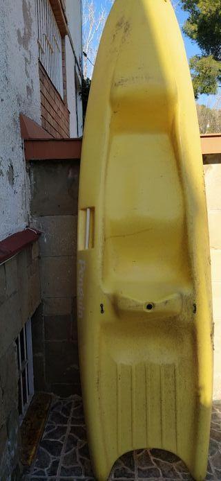 kayak Penguin