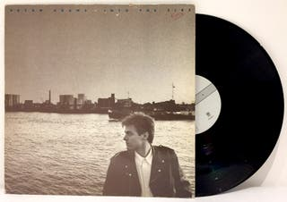 LP Bryan Adams - Into The Fire
