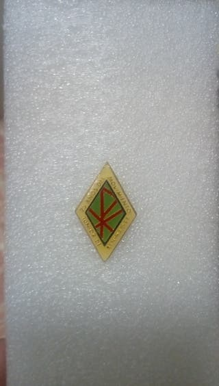 insignia pin festina