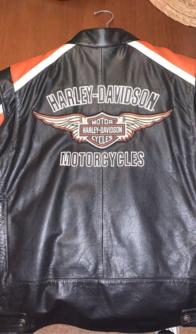 Cazadora chaqueta Harley Davidson hombre