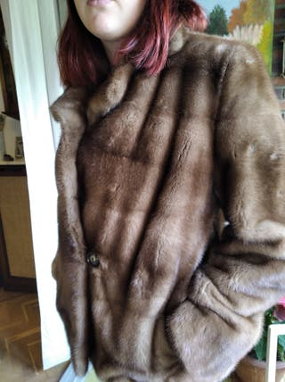 Visón chaquetón juvenil