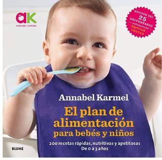 el plan de alimentacion para bebés y niños