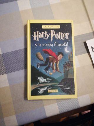 Libro Harry Potter
