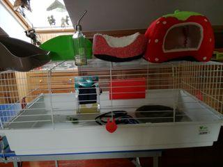 Jaula de conejo, bebedero, 2 bandejas, caseta cama