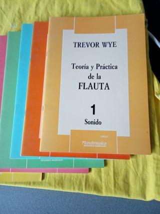 Trevor Wye. Curso completo Flauta