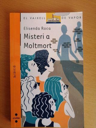 Misteri a Moltmort