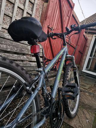 """""""Boy"""" Mountain Bike"""