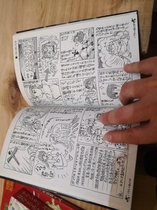 El Castillo Ambulante Studio Ghibli. libro japonés