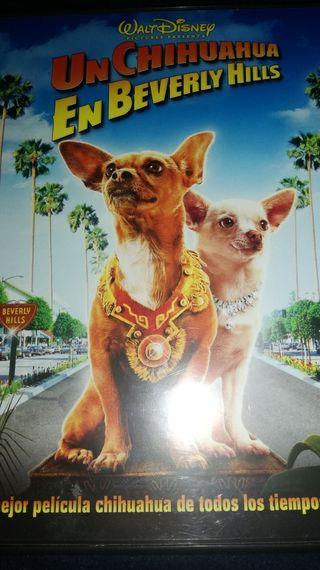 UN CHIHUAHUA EN BEVERLY HILLS DVD