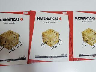 Libro matemáticas Anaya. 6° primaria