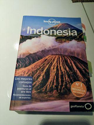 guía de Indonesia.