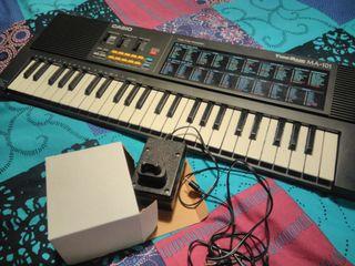 teclat casio / teclado piano casio