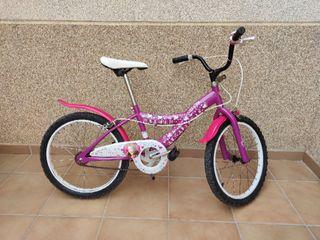 Bicicleta violeta