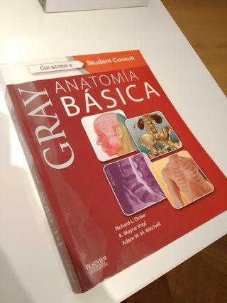 Anatomía Básica GRAY