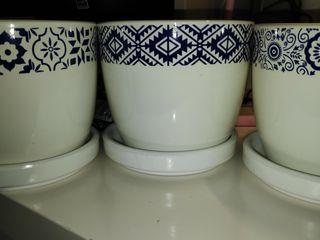 maceteros blancos con detalles azul, con plato