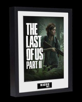Cuadros The Last Of Us Edición Coleccionista