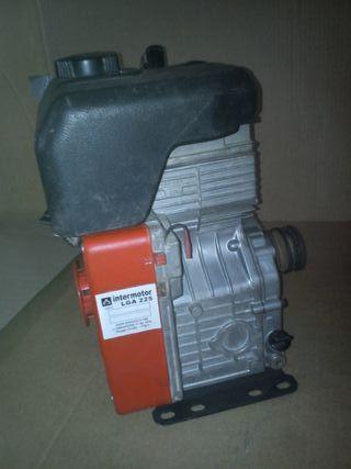 motor lombardinini