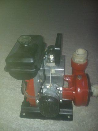motor miranelli