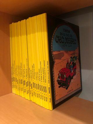 Colección cómics Tintin