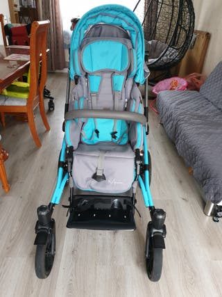 Disabled buggy