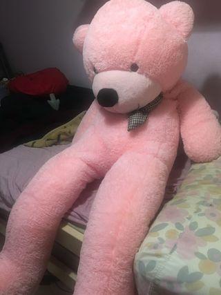 Peluche oso gigante Rosa