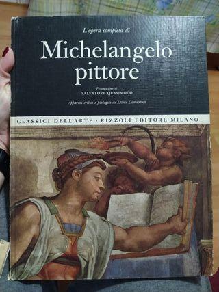 libro: Michelangelo Pittore