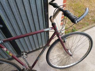 Benotto, ideal gravel, cicloturismo,ciclocross