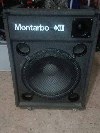 amplificador con altavoz
