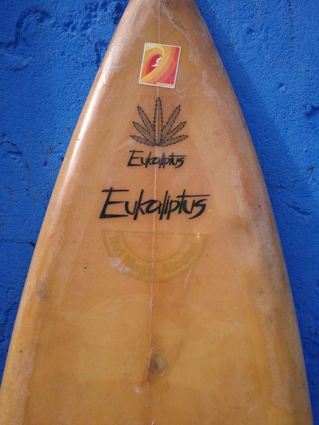 tabla de surf eukaliptus